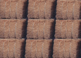 produk olahan kelapa