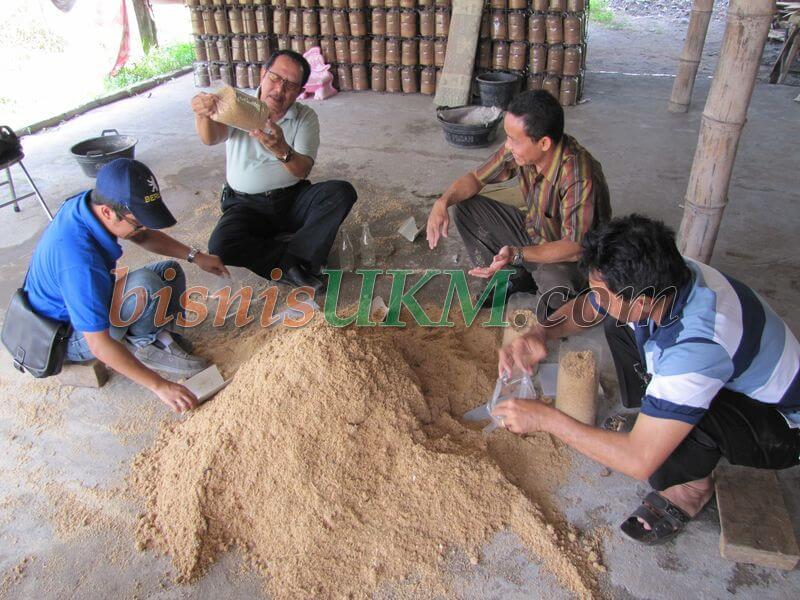 Belajar Bisnis Budidaya dan Produksi Jamur Tiram
