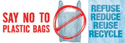 no plastic bag essay