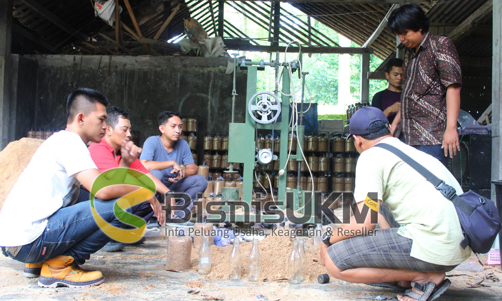 Praktek pembuatan media tanam jamur tiram