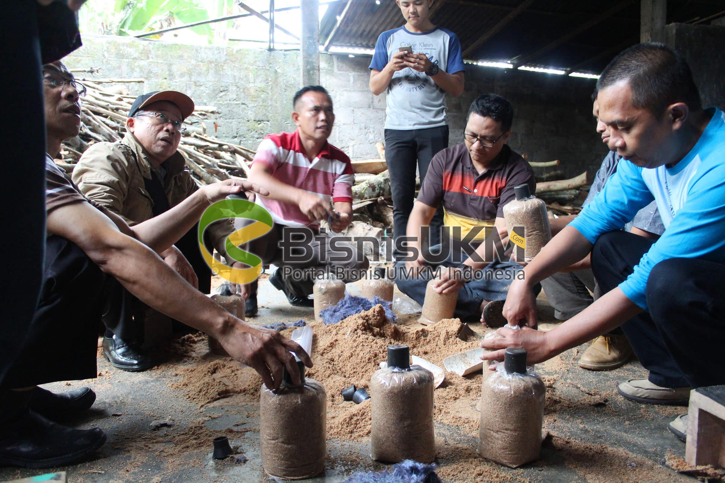 Para peserta praktek membuat baglog jamur tiram