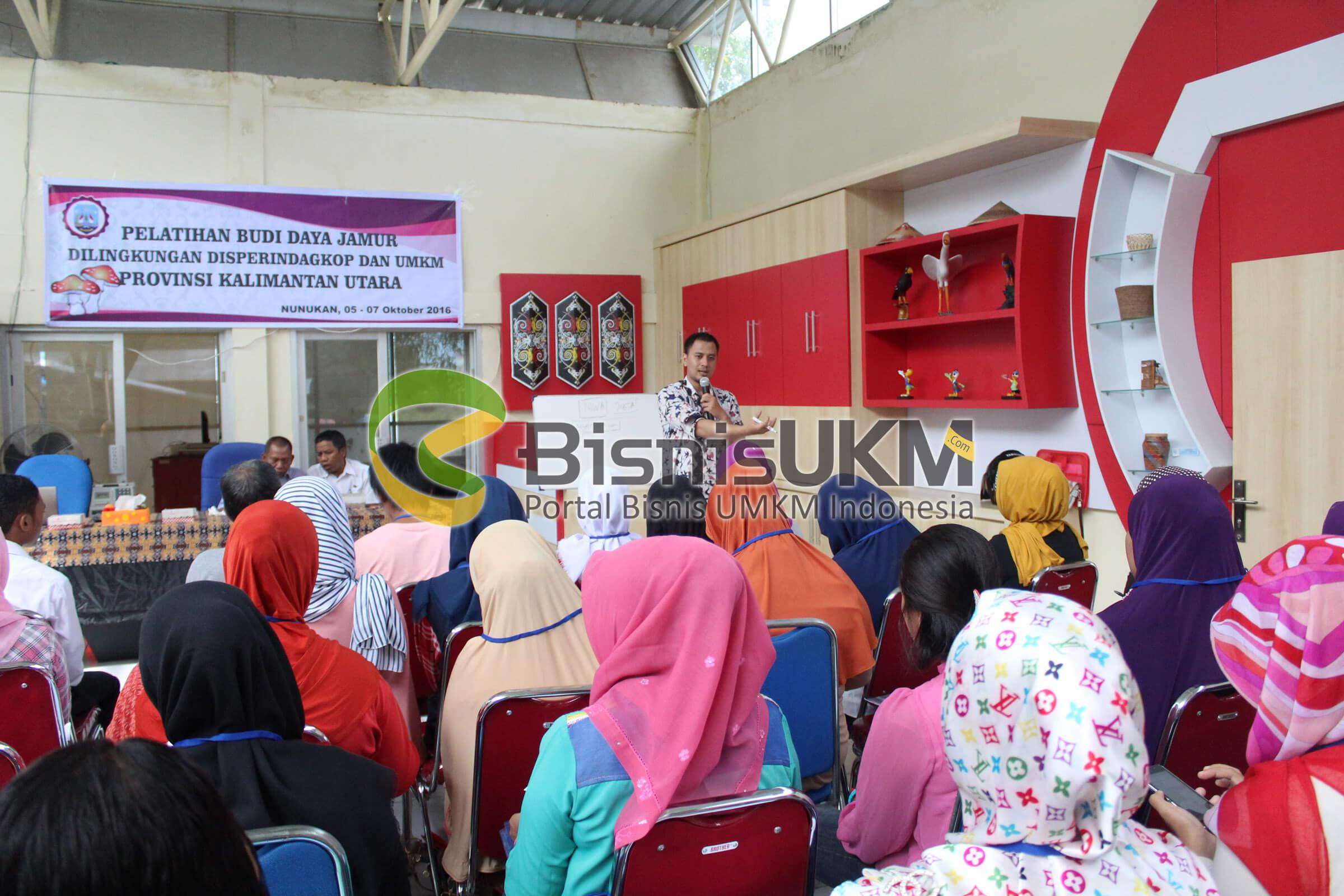 Pelatihan Budidaya Jamur di Lingkungan Disperindagkop dan UMKM Provinsi Kalimantan Utara