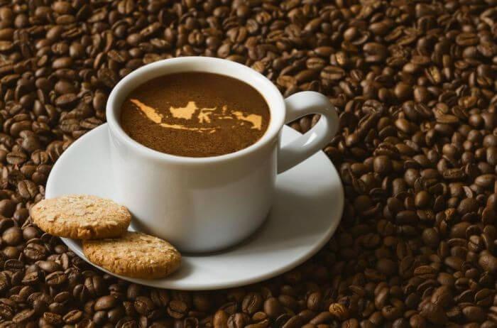 eksportir kopi
