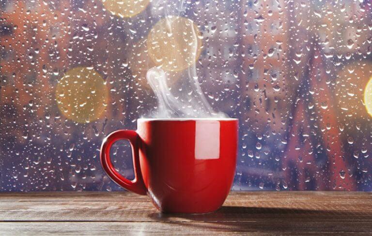 6 Ide Bisnis Rumahan Ini Cocok Buat Cari Untung di Musim Hujan