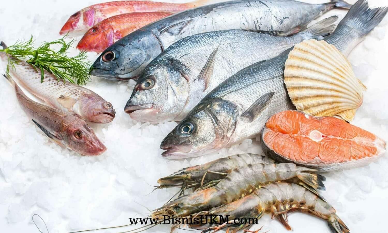 bahan-makanan-tetap-fresh-dan-kualitas-tetap-terjaga