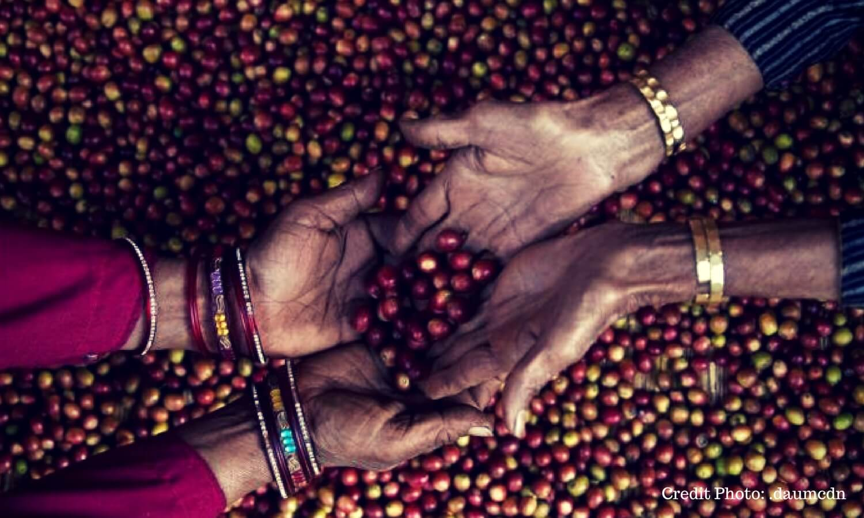 woow-kopi-ini-bisa-mencuri-aroma-tanaman-disekitarnya