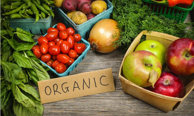 bisnis-produk-pertanian-organik
