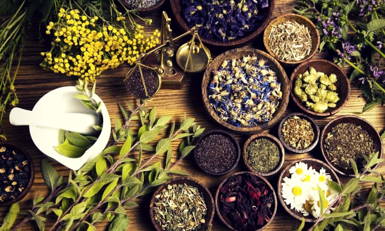 siapa-bilang-semua-obat-herbal-aman-ini-fakta-dan-tips-memilihnya-min