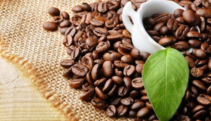 mau-usaha-kopi-wajib-kenali-jenis-kopi-indonesia