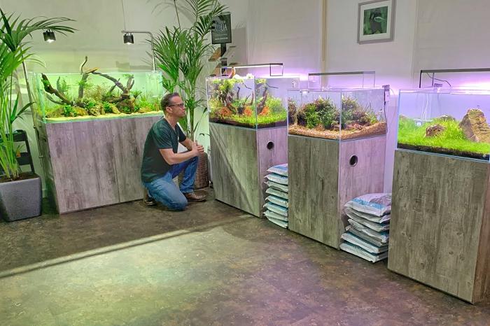 Bisnis Aquascape Peluang Usaha Rumahan Cocok Untuk Pensiunan