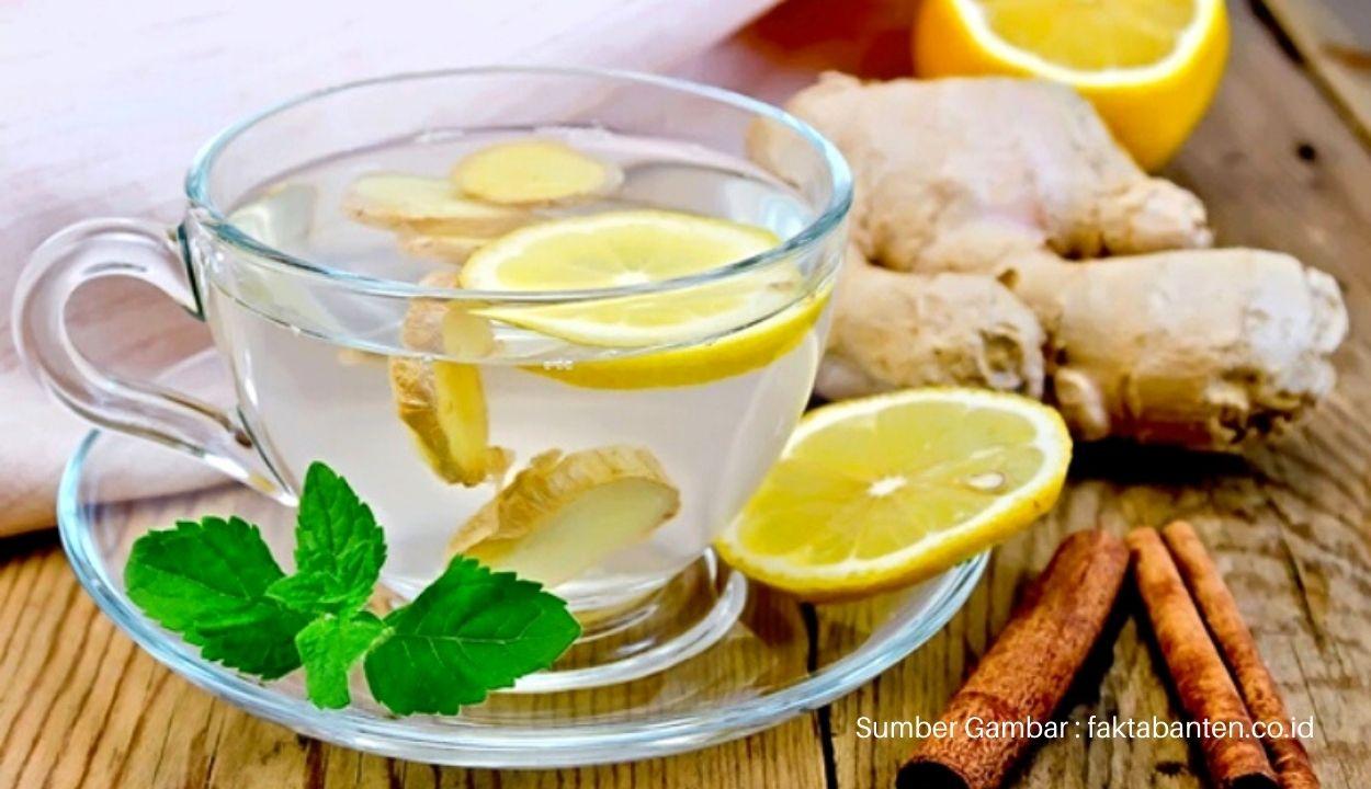 16-Ide-Bisnis-Minuman-Kesehatan-Tradisional-Khas-Indonesia