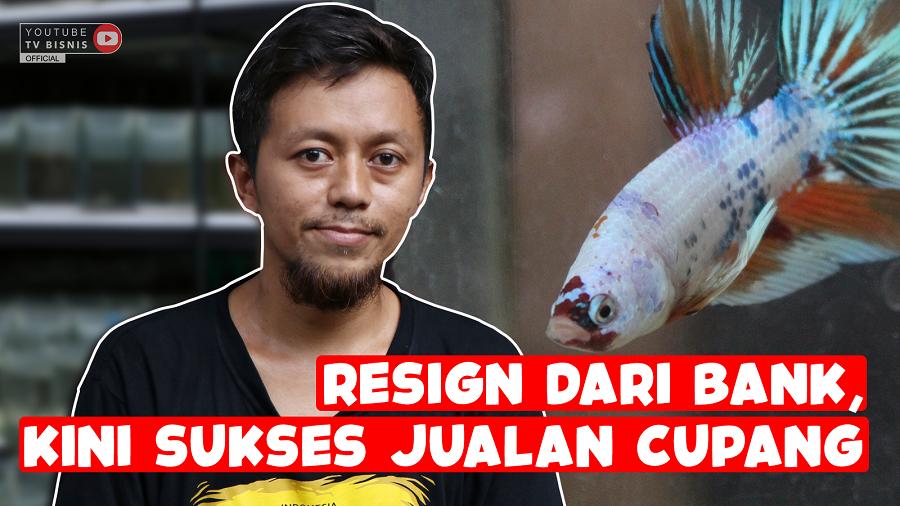 Resign Dari Bank, Kini Sukses Bisnis Ikan Cupang!